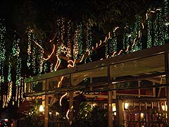 Festive lighting at Thon Krueng