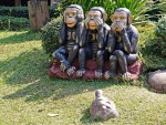 Familiar monkeys at Wat Nantaram, Chiang Kham