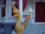 MaeSalong-TempleNaga-4225_1600