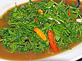 Stir-fried ferns, Samila Sea Sport restaurant, Songkhla